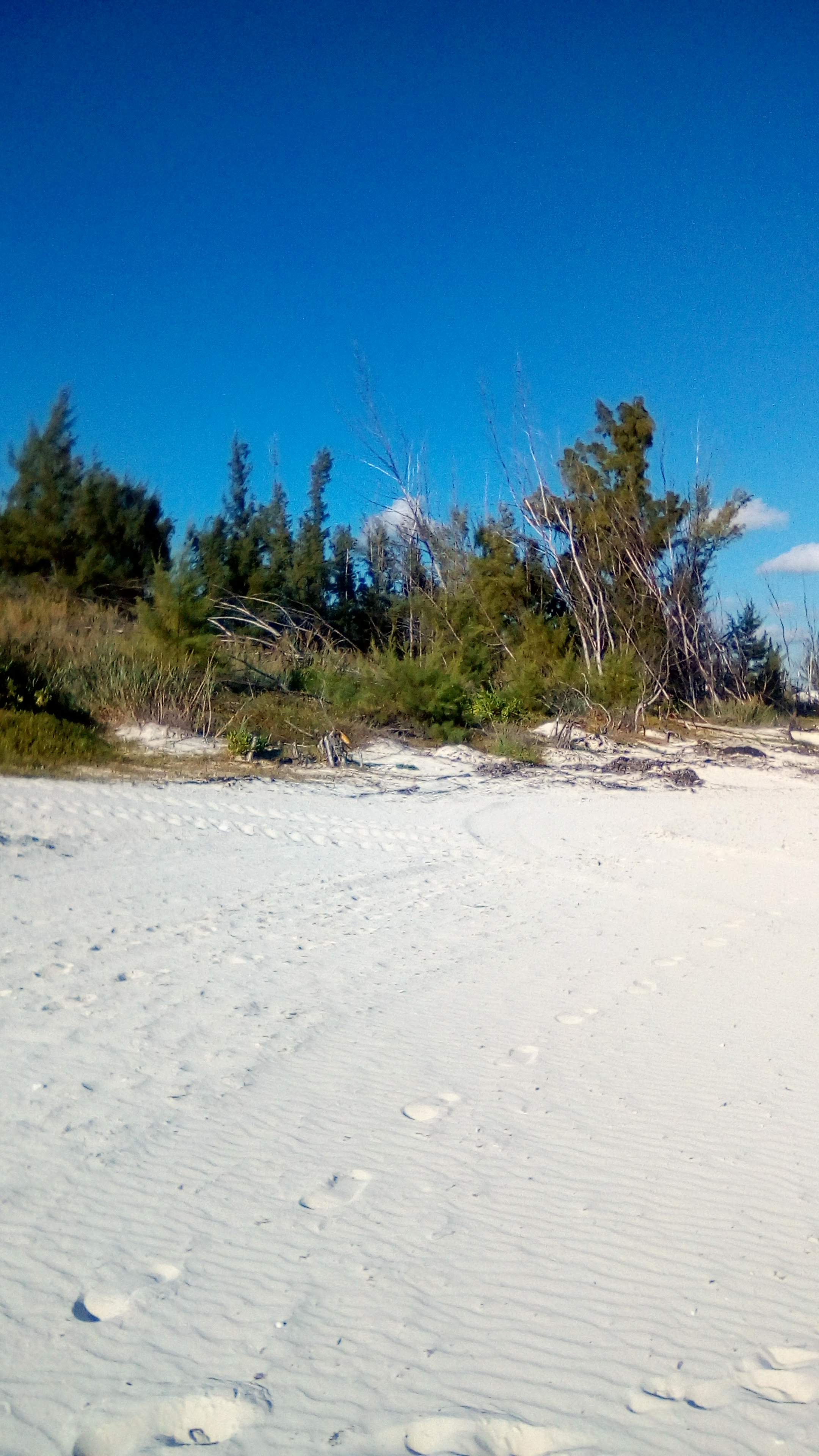Mather Town Beach Tract