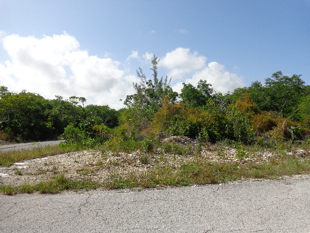 Royal Bahamia Estates Section B, Block 28, Lot 8